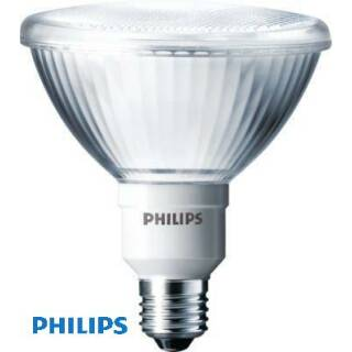 Philips Downlighter