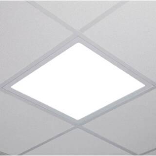 Licht365 Com